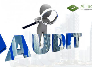 Significance of an Audit System for A Company