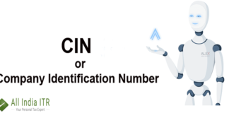 CIN or Company Identification Number